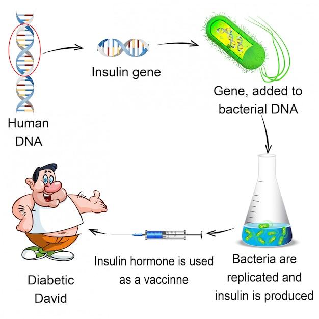 Biologia - pessoas com diabetes e seu tratamento Vetor Premium