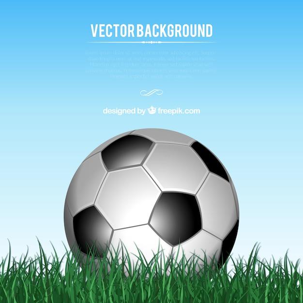 banco de jardim vetor:Grass Vector Free Download