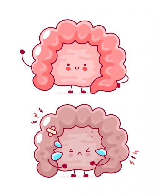 Bonito feliz e triste órgão do intestino humano engraçado. Vetor Premium