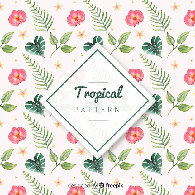 Bonito, tropicais, fundo Vetor grátis