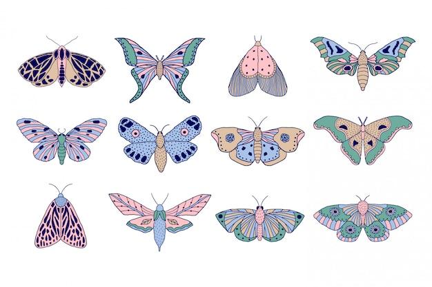 Borboletas e mariposas coloridas Vetor Premium