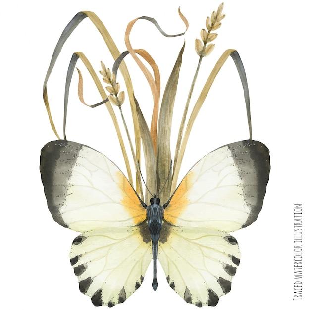 Boutonniere composição com borboletas e plantas Vetor Premium