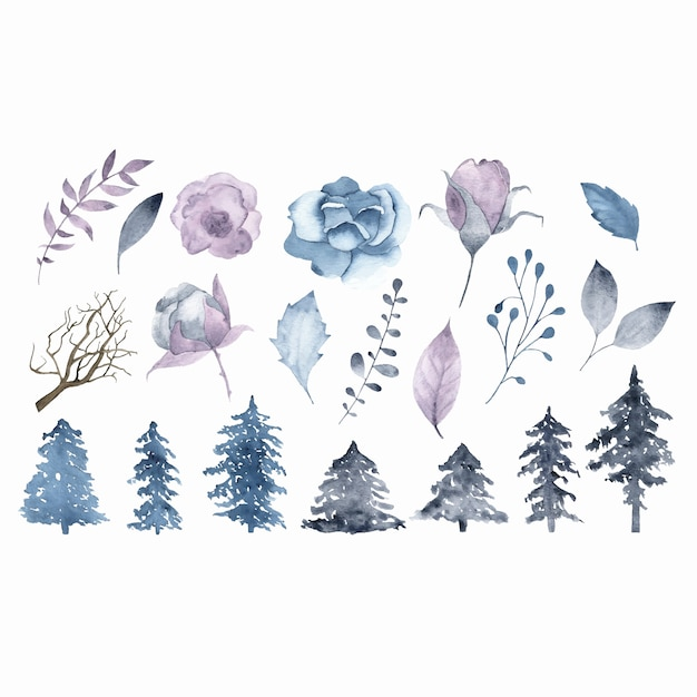 Brunch de flores em aquarela de inverno deixa a árvore do abeto isolada Vetor grátis
