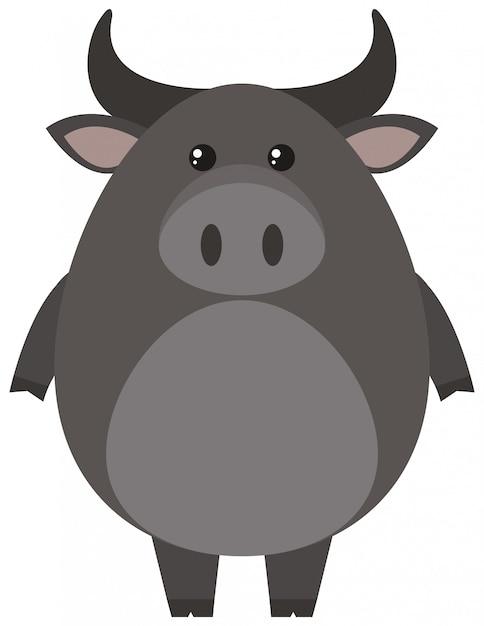 Búfalo cinzento em fundo branco Vetor grátis