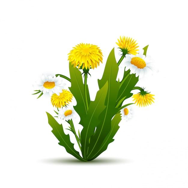 Buquê de flores e chamomiles com folhas Vetor Premium