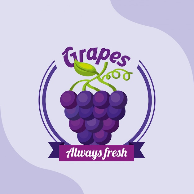 Cacho de frutas uvas sempre fresco emblema Vetor Premium
