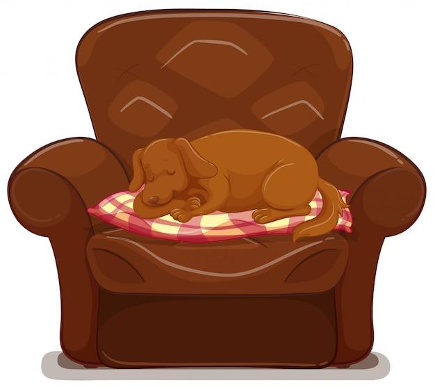 Cachorrinho dormindo no sofá marrom Vetor Premium
