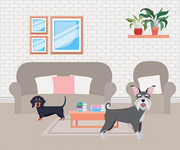 Cachorrinhos fofos na sala de visitas Vetor Premium
