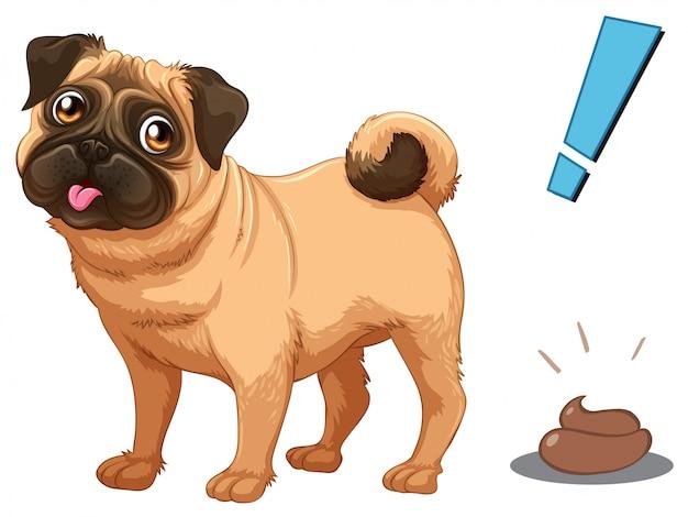 Cachorro e poo no fundo branco Vetor Premium