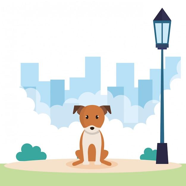 Cachorro fofo no parque Vetor grátis