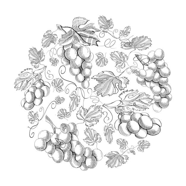 Cachos de uva com padrão de círculo repetindo lindas frutas na mão branca. Vetor grátis