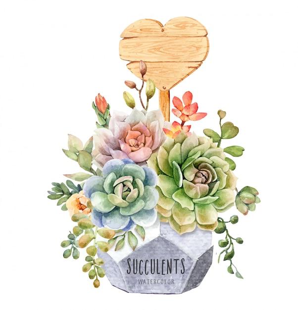 Cactos em aquarela e suculentas em flower pot geométrica Vetor Premium