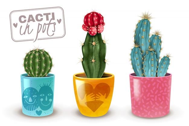 Cactos em conjunto realista de potes decorativos coloridos de 3 plantas populares populares de cuidados fáceis closeup Vetor grátis