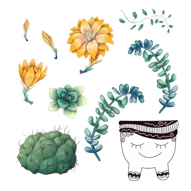 Cactos em vasos e plantas suculentas conjunto de coleta de crachá. Vetor Premium