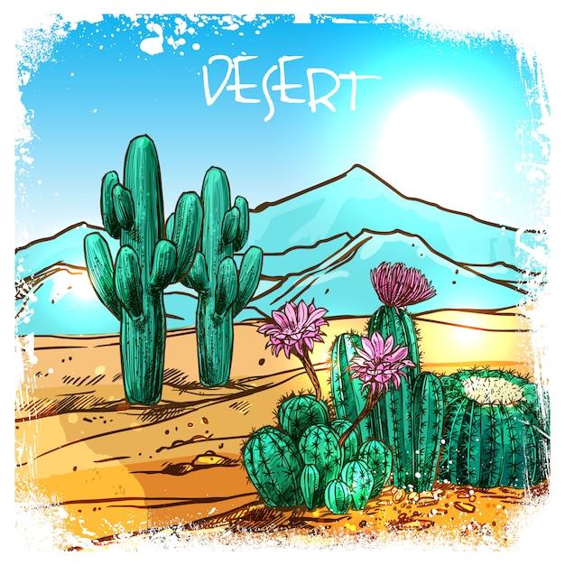 Cactus in desert sketch Vetor grátis