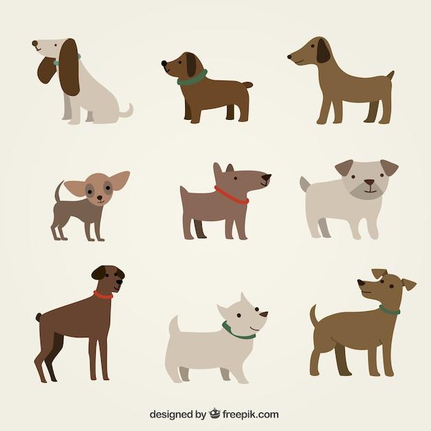 Cães bonitos ilustração Vetor grátis