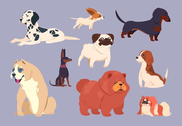 Cães dos desenhos animados. filhote de cachorro de raças diferentes. coleção de vetores de chow chow, dachshund e dálmata, pit bull e pequinês, pug e beagle Vetor Premium