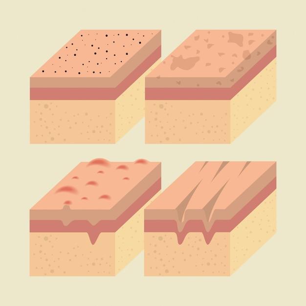Camadas de tipos de pele Vetor grátis