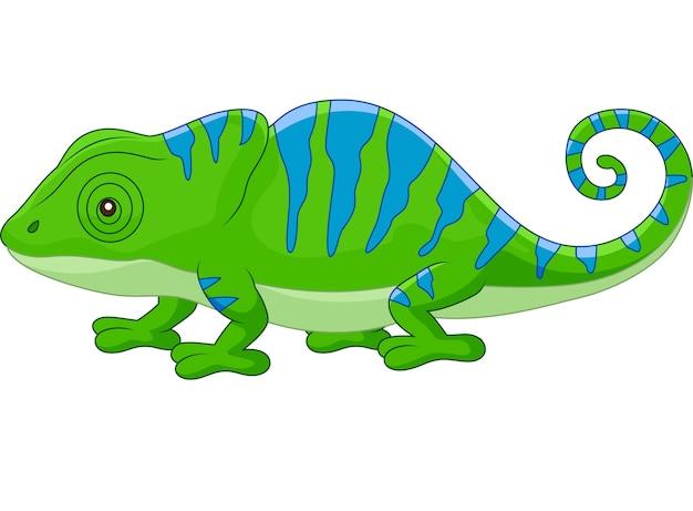 camaleão bonito dos desenhos animados baixar vetores premium