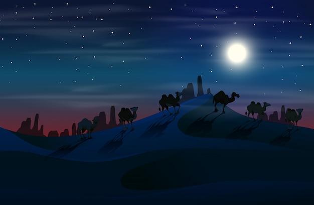 Camelo no deserto à noite Vetor Premium