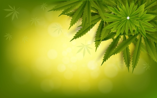 Cannabis leaf green drug marijuana herb Vetor Premium