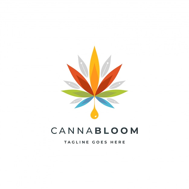 Cannabis or hemp logo colorido Vetor Premium