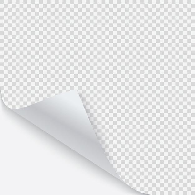 Canto enrolado de papel com sombra Vetor Premium