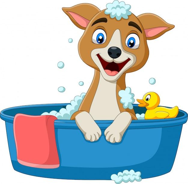 Cão dos desenhos animados, tomando banho Vetor Premium