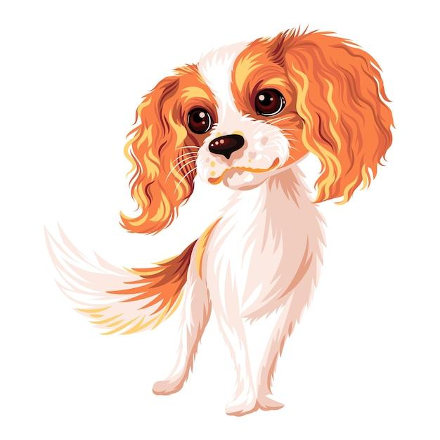 Cão sorridente fofo raça cavalier king charles spaniel Vetor Premium