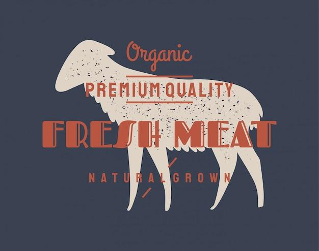 Carneiro de carneiro Vetor Premium