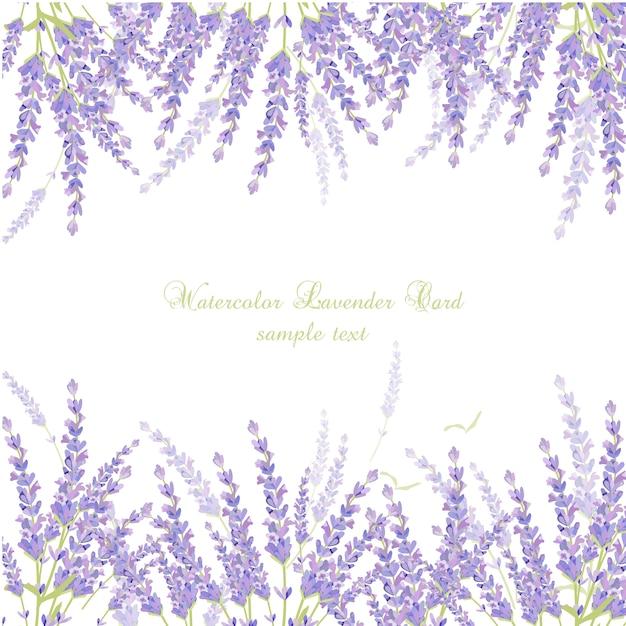 Cartão da alfazema da aguarela Vetor grátis
