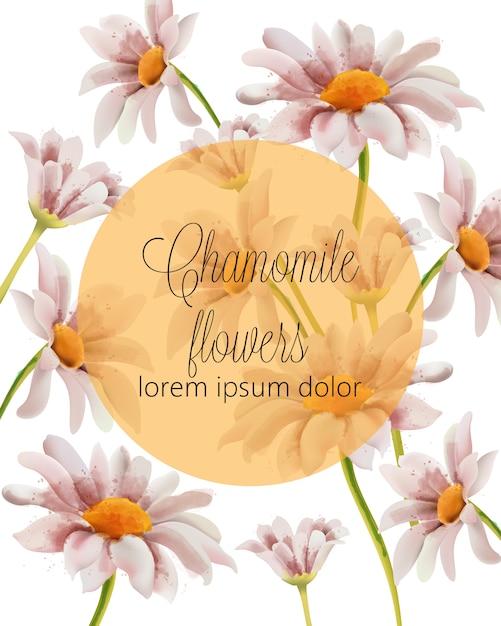 Cartão de flores de camomila com lugar para texto em um círculo cheio de ouro Vetor grátis