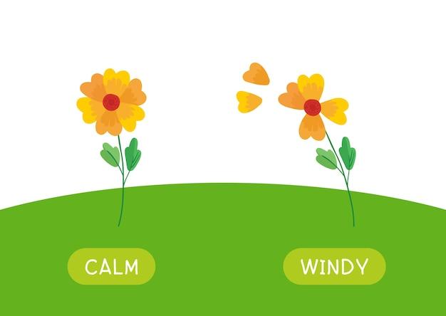 Cartão de palavra educacional infantil com modelo de antônimos. flashcard para estudar inglês. opostos, conceito de clima, calmo e ventoso. flores paradas e ondulantes Vetor grátis