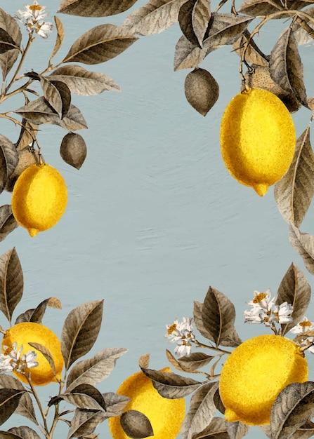 Cartão de quadro de limões em branco Vetor grátis