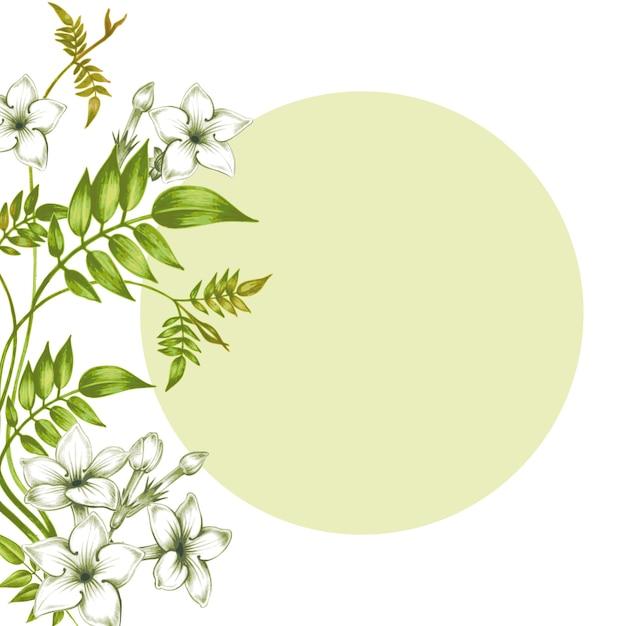 Cartão de vetor - flores de jasmim. Vetor Premium
