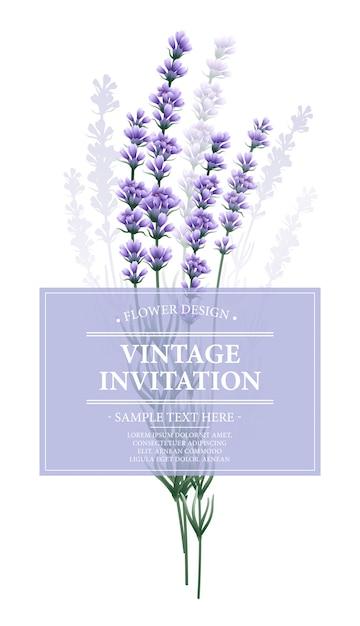 Cartão vintage com flor de lavanda. Vetor Premium