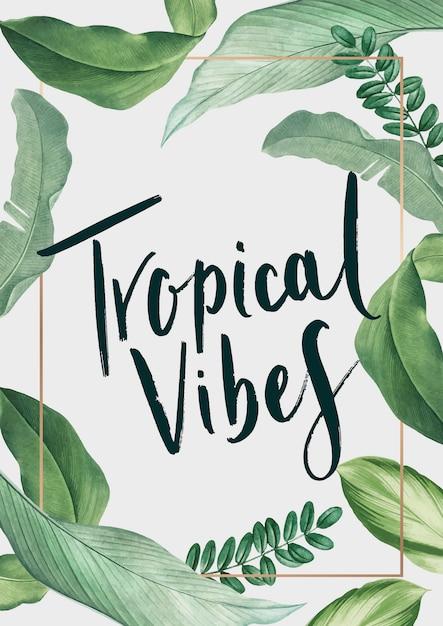 Cartaz tropical das vibrações Vetor grátis