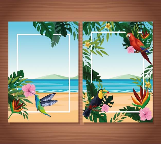 Cartões em branco de verão com moldura Vetor grátis