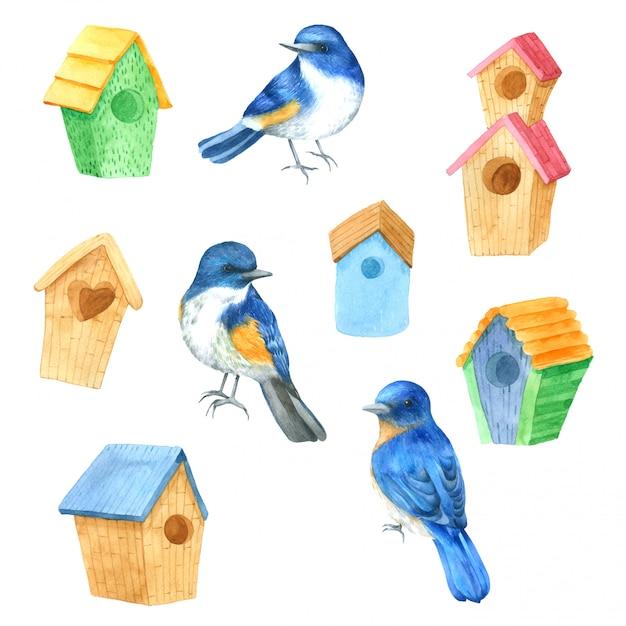 Casa de pássaros aquarela mão desenhada pintada para design Vetor Premium
