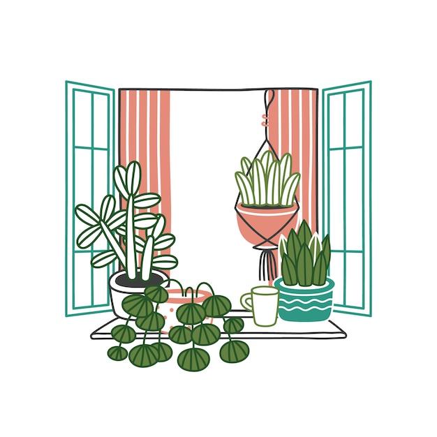 Casa plantas e flores em vasos em janela aberta Vetor Premium