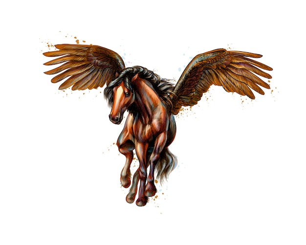 Cavalo alado mítico de pégaso de respingos de aquarelas. esboço desenhado de mão. ilustração de tintas Vetor Premium