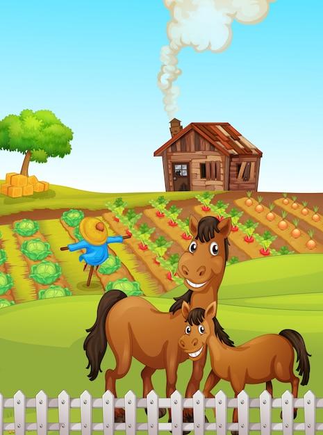 Cavalo na ilustração da terra Vetor grátis