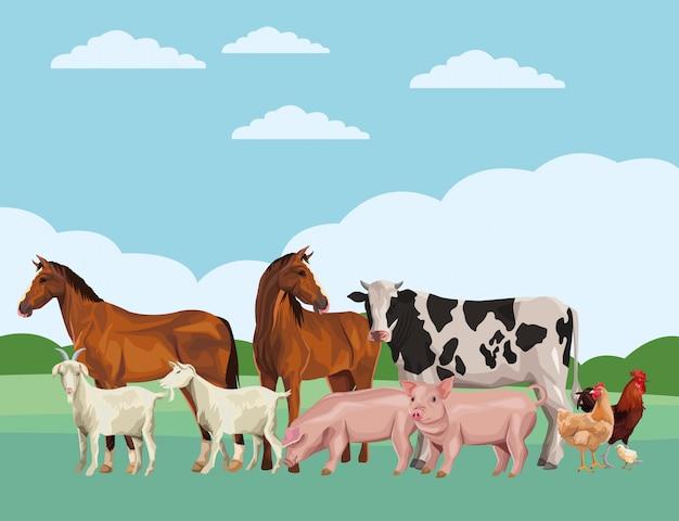 Cavalo vaca porco cabra galo galinha Vetor Premium