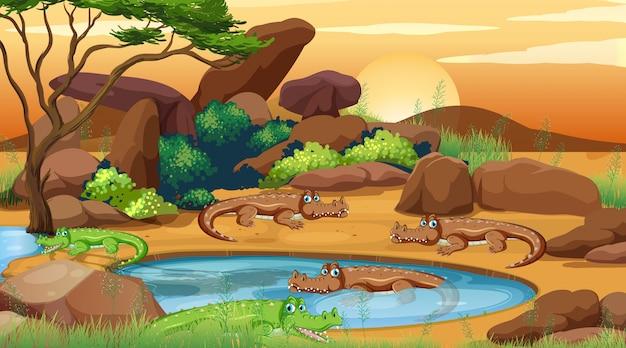Cena com crocodilos à beira da lagoa Vetor Premium