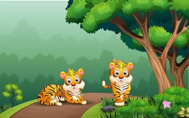 Cena com dois tigres na estrada Vetor Premium