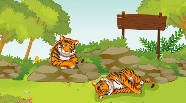 Cena com dois tigres tristes no parque Vetor grátis