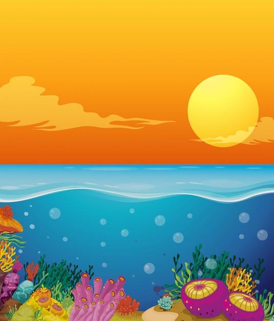 Cena, com, recife coral, sob, a, oceânicos Vetor grátis