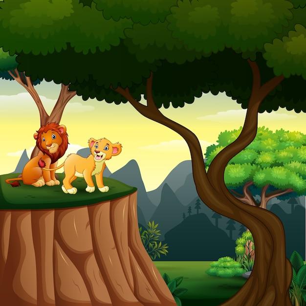 Cena da floresta com leões no penhasco Vetor Premium
