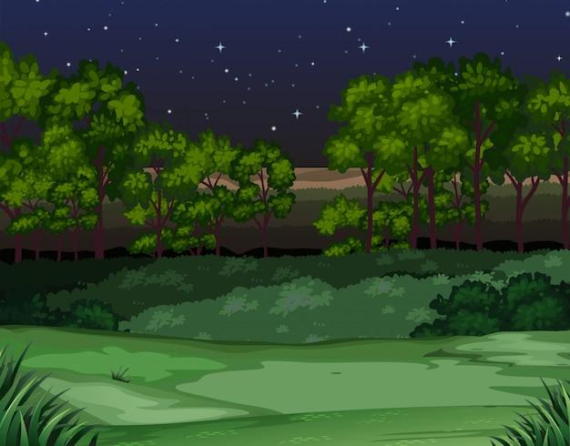 Cena da natureza à noite Vetor Premium