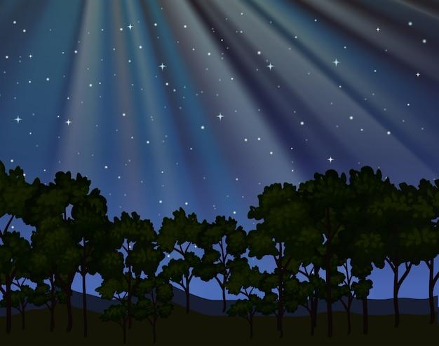 Cena da natureza com floresta à noite Vetor Premium